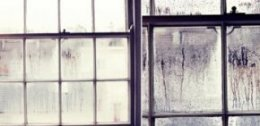 Condensation Windows