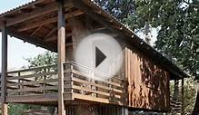 TRICKED-OUT SHIPPING CONTAINER HOMES : Two-Tree House, by